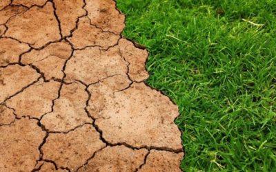 """Préparation de la """"Marche pour le Climat"""" – 3ème édition"""